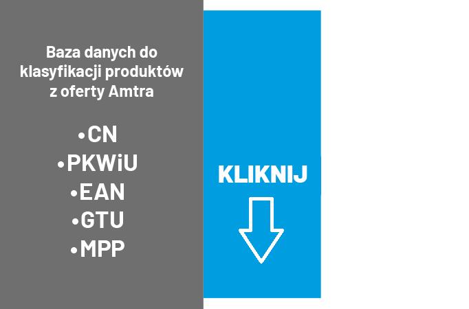 Baza danych do klasyfikacji produktów z oferty Amtra